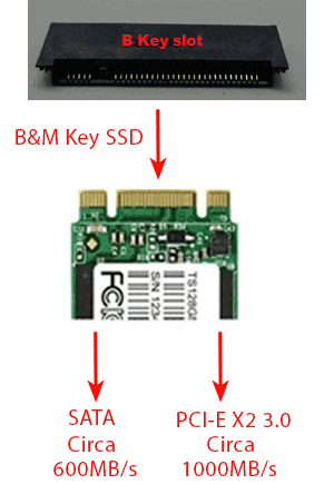 differenze b&m key ssd